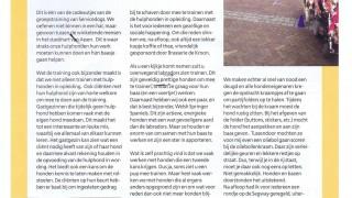 Service Dogs hulphonden Drenthe